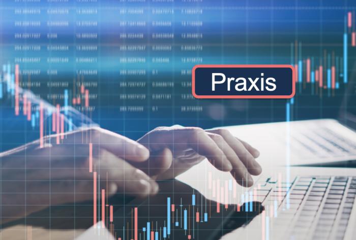XX_Praxis